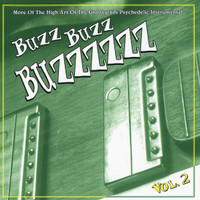 BUZZ BUZZ BUZZ-Vol 2- More of the high art of.... (60s Psych) CD
