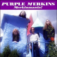 PURPLE MERKINS  - Merkinmania  ( 66-style garage punk)   CD