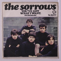 SORROWS(UK) YOU'VE GOT WHAT I WANT (fantastic 1966 British freakbeat)PINK VINYL  45 RPM