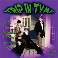 TRIP IN TYME Vol 5-  22 time travelling US '60s garage jewels-  COMP CD
