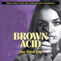 BROWN ACID  - THE THIRD TRIP (60S PSYCH RARITIES) RED TRANSPARENT VINYL  COMP LP