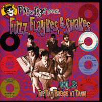 FUZZ,FLAYKES & SHAKES Vol 2: The Day Breaks At Dawn (60's garage punk psych )  COMP CD