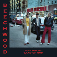BEECHWOOD - Songs From the Land of Nod (KILLER  NUGGETS-STYLE PSYCH GLAM PUNK !) W INSERT, LTD ED STARBURST VINYL