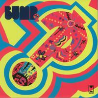 BUMP  -2 (fantastic Detroit Stooges/MC5  psych style psychmonster )  LP