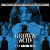 BROWN ACID  - THE  SIXTH TRIP (HEAVY ROCK FROM THE UNDERGROUND COMEDOWN' COMP CD