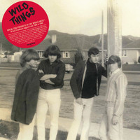 WILD THINGS  -16 KIWI FREAKBEAT NUGGETS  1966-1968 (filthy fuzzy mahen from down under!)-  COMP LP