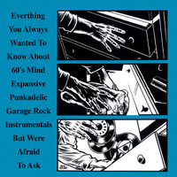 EVERYTHING YOU ALWAYS WANTED TO KNOW ABOUT MIND EXPANSIVE PUNKADELIC GARAGE ROCK INSTROS  (60s Pebbles style garage )COMP CD