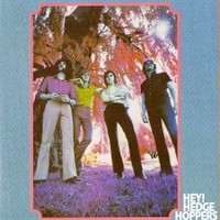 HEDGE HOPPERS -Hey! (UK 60s pop psych) CD