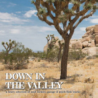 DOWN IN THE VALLEY  Vol 1- heavy selection of mod-rockers, garage and psych-funk tracks- COMP LP