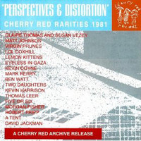 PERSPECTIVES AND DISTORTION   - VA -   COMP CD