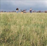GREEN   - Eau de Vie (Power pop 2001)   CD