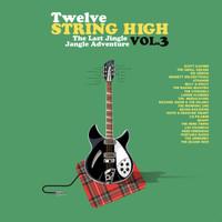 TWELVE STRING HIGH  VOl 3  -Mind expanding tunes!  DBL COMP LP