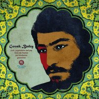 VAGOUSH BEDEY   -Funk, Psychedelia And Pop From The Iranian Pre-Revolution Generation- DBL   COMP LP