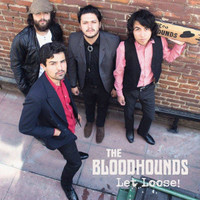 BLOODHOUNDS - Let Loose -  bluesy garage-rock! RIYL early Stones, Yardbirds and Nuggets.Digipack CD