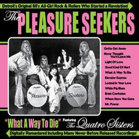 PLEASURE SEEKERS -What a Way To Die - w. the Quatro Sisters ( 60s )-CD
