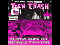 TEEN TRASH 2-The Psychoviolets( 60s style garage)  CD