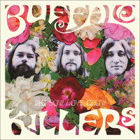 BUFFALO KILLERS - Dig Sow Grow Love (STONER PSYCH) Digipack CD