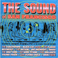 SOUND OF SAN FRANCISCO - ST w Two Gallants, Coachwhips and more)  Drilled promo  COMPCD