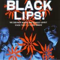 BLACK LIPS   - We Did Not Know the Forest Spirit Made the Flowers Grow- 180 GRAM CLASSIC BLACK VINYL