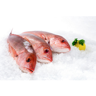 subcategory display for Fresh Fish for Sale