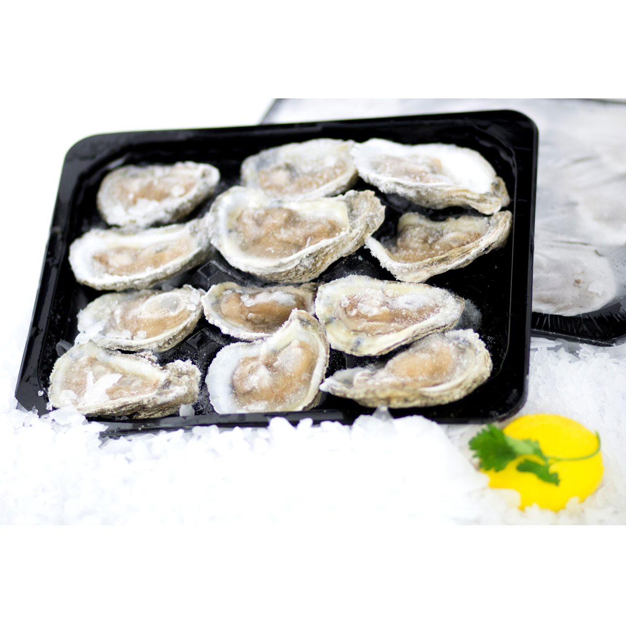Packaged oysters over ice with garnish