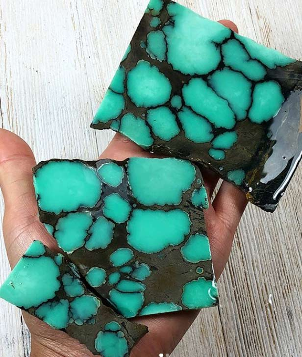 Desert Bloom Nevada Variscite slices