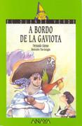 A bordo de La Gaviota - Aboard the Seagull