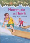 Maremoto en Hawái - High Tide in Hawaii