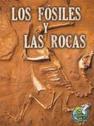 Los fósiles y las rocas - Fossils and Rocks