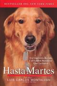 Hasta Martes - Until Tuesday
