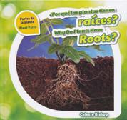 ¿Por qué las plantas tienen raíces?/Why Do Plants Have Roots?