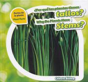 ¿Por qué las plantas tienen tallos?/Why Do Plants Have Stems?