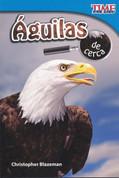 Águilas de cerca - Eagles Up Close
