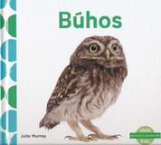 Búhos - Owls