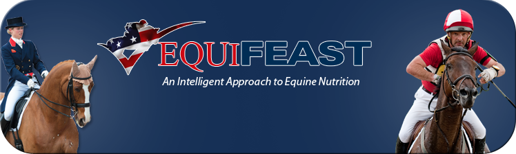 equifeast-americas-horse-supplements-horse-calmers-banner.png