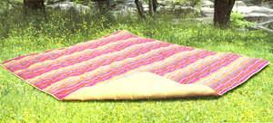 BRAND NEW PICNIC Multi Function Blanket Water Resistant