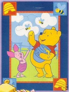 TWIN Winnie the Pooh MINK PLUSH BLANKET throw bedspread