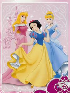 TWIN Disney 3 Princess MINK PLUSH BLANKET throw NEW!!