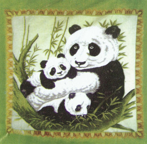 QUEEN Panda Design, Pandas 2 PLY Plush Raschel Blanket