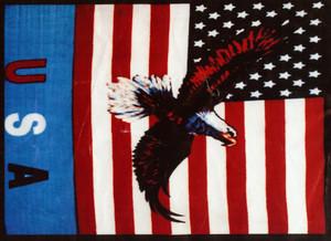 QUEEN Korean Made USA + Eagle Plush Raschel Blanket