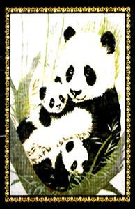 QUEEN Korean Design Panda Bears Plush Raschel Blanket