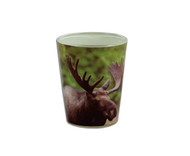 Shot glass with a moose pictured around the glass.
