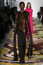 Emilio Pucci Fall 2017 Ready To Wear Look 5