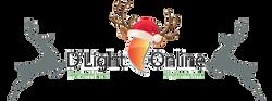 DlightOnline.com