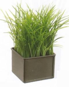 """7"""" Grass 3""""x3"""" Metal Container Pot In or Outdoor Arrangement"""