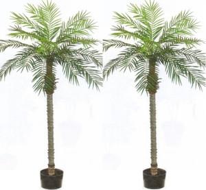 Attirant 2 ARTIFICIAL 7u0027 PHOENIX PALM TREE PLANT SILK BUSH POOL PATIO DECK  ARRANGEMENT POTTED
