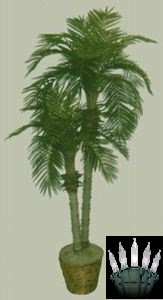 Silk Palm Trees For Sale Indoor Palm Tree Plants