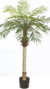 ARTIFICIAL 5u0027 PHOENIX PALM TREE PLANT SILK BUSH POOL PATIO DECK ARRANGEMENT  POTTED