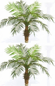 faux plants | indoor artificial palms | bare root trees