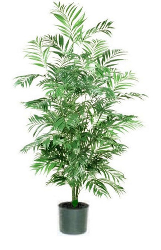 artificial indoor palm trees | potted palm tree Artificial Indoor Trees